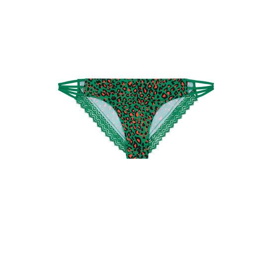 Braguita brasileña verde esmeralda hindiz;