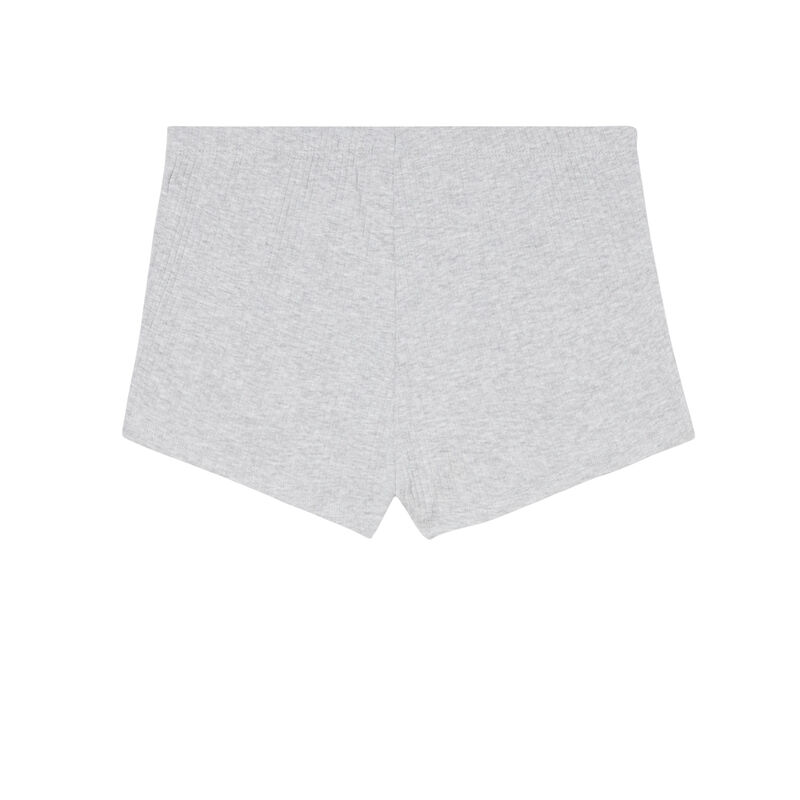 short corto liso - gris;