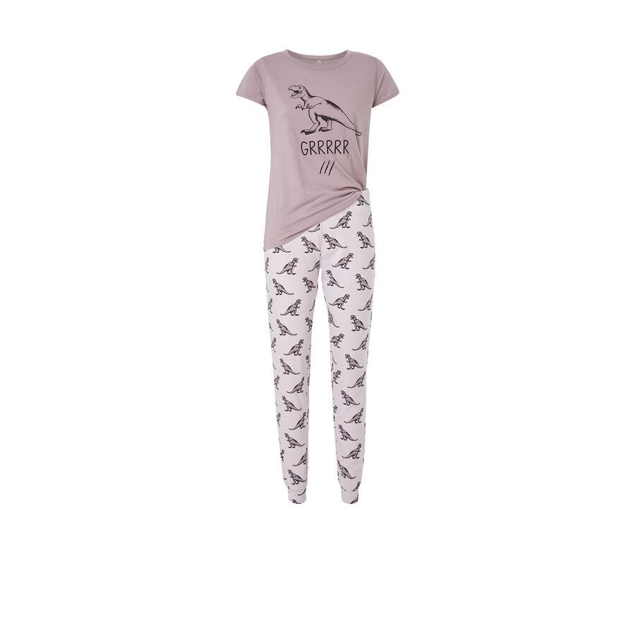 Conjunto de pijama gris dinossiz;${refinementColor}