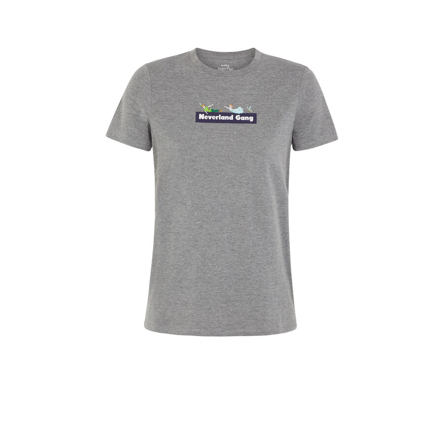 Camiseta gris peterpaniz;