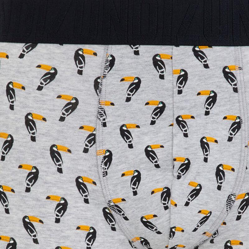 Bóxer gris toucaniz;