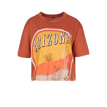 Top camel arizoniz brown.